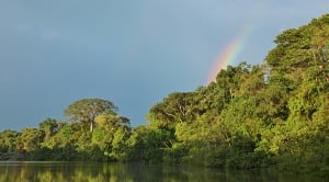 Rainforest Trust announced its largest project yet, conservation of the Sierra del Divisor reserve in the Peruvian Amazon rainforest, to coincide with the announcement of its new name.
