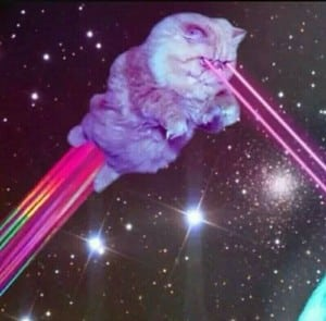 cat-that-shoots-lasers