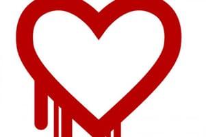 Image: KXL.com