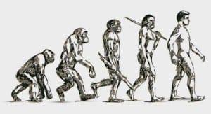 Evolution_stock