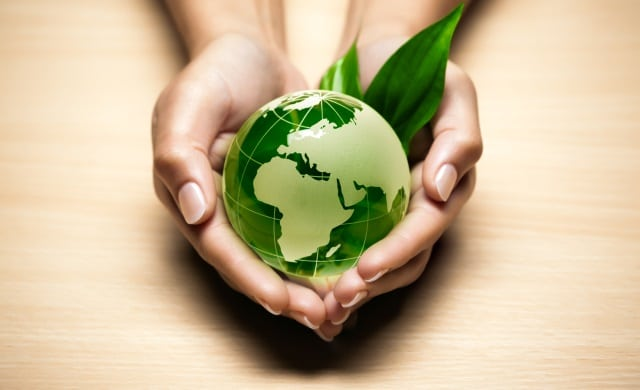 Green efforts should be a natural extension of your brand identity.