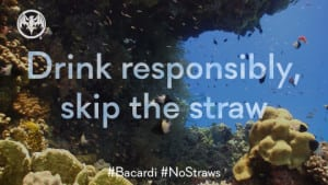 No Straws Pledge