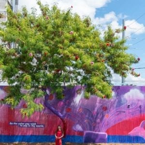 DeVries Global for P&G/Aussie's Purple Lining Street Art Activation