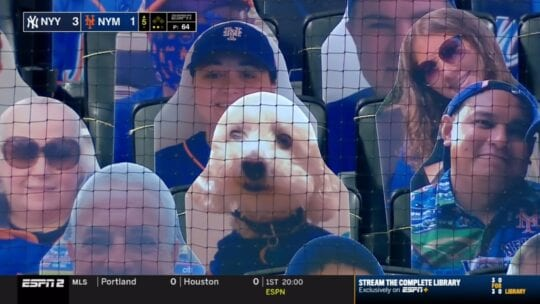 Dog fan cutout at Mets game